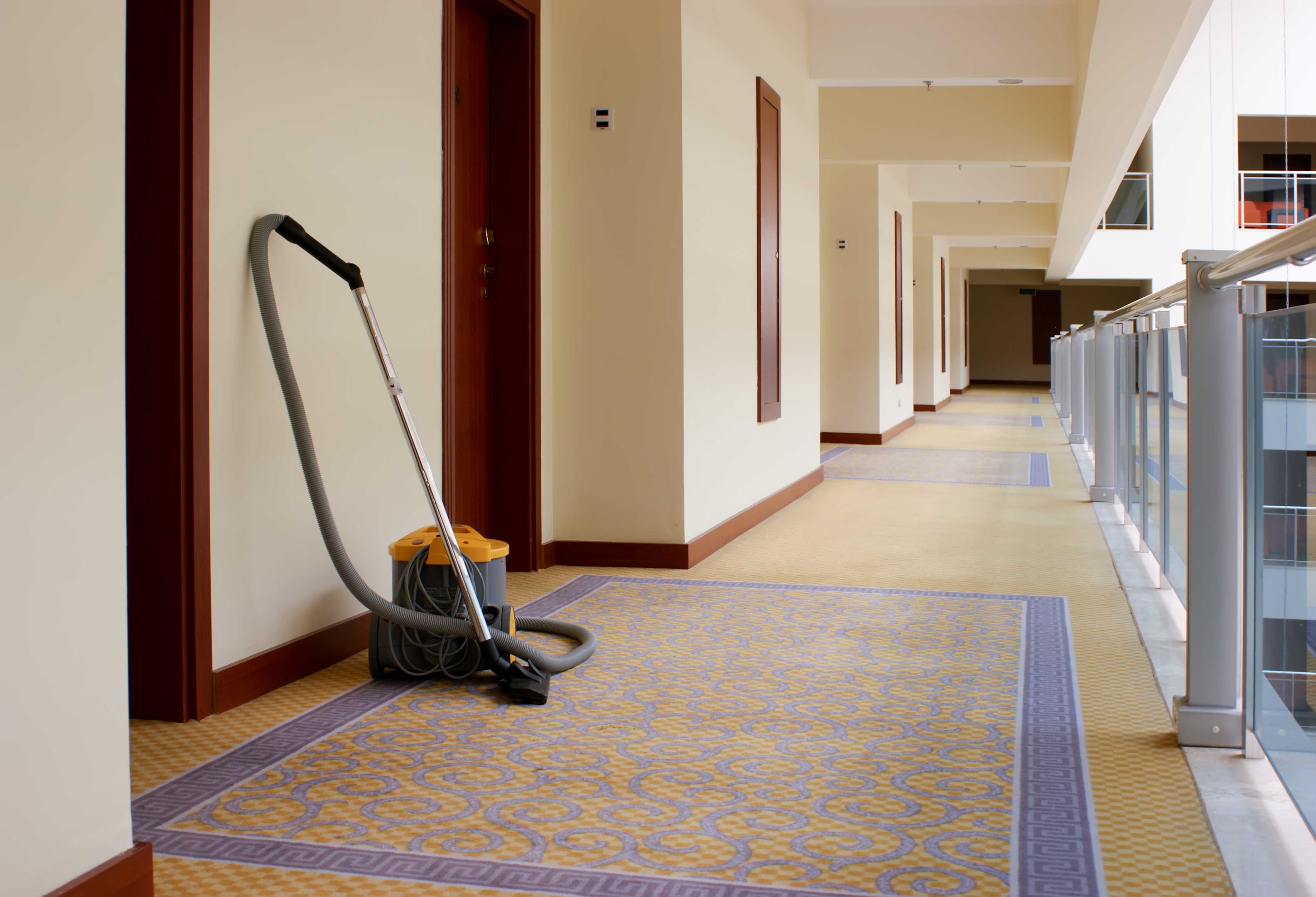 Is Your Carpet Shrinking?